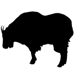 Mountain goat Silhouette Vector Graphics