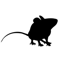 Mouse Silhouette Vector Graphics