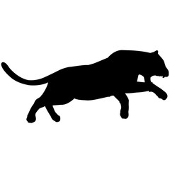 Panther Silhouette Vector Graphics