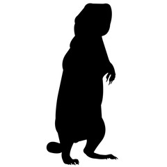 Prairie dog Silhouette Vector Graphics