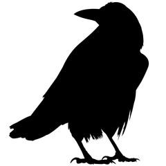 Rook Silhouette Vector Graphics