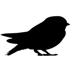 Swallow Silhouette Vector Graphics