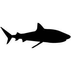 Tiger shark Silhouette Vector Graphics
