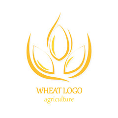 Agriculture Wheat Logo Icon Design Template Vector Illustration