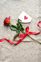 一輪の赤い薔薇とニットのポケットに入ったメッセージカード