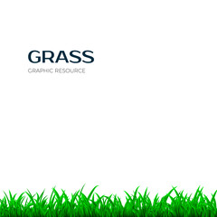 Grass border. Horizontal banner with green grass. Vector illustration isolated on white background