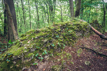 Barely visible remains of Ostreznik Castle in Polish Jurassic Highland, Silesia region in Poland