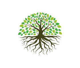 green forestry strong root tree logo