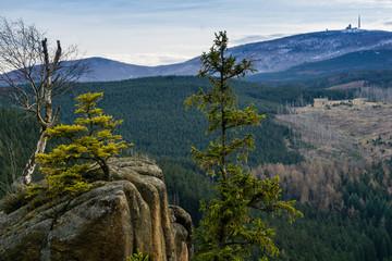 Harz mit Blick auf den Brocken