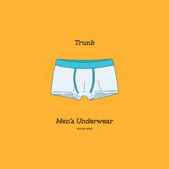 Vector illustration of men's underwear, trunks.