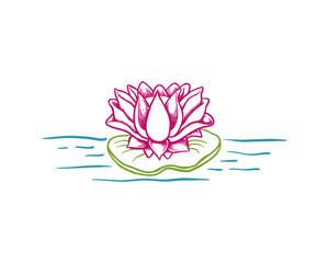 Beautiful Lotus Flower and Lily on the Water Illustration Hand Drawing Symbol Logo Vector