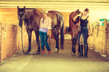 Cowgirl and jockey walking with horses in stable