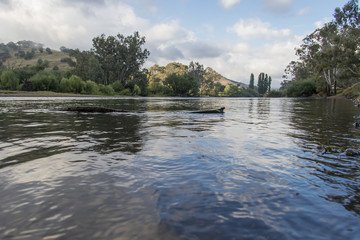 The Murray River near Jingellic, New South Wales, Australia