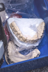 Dental prosthesis in plastic bag