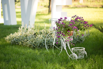 Decorative bicycle with purple flowers on summer grass