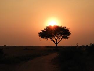 Sonnenuntergänge - Enioy the sun