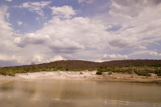 desolate oasis, desert, Atlixco Valley and Matamoros, San Diego La Mesa Tochimiltzingo, Puebla, Mexico