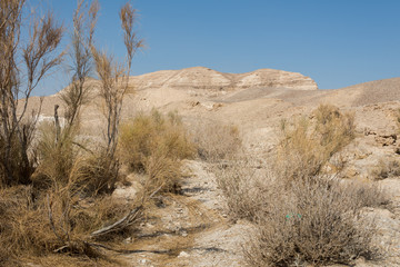 Hiking in Dead Sea area in Israel