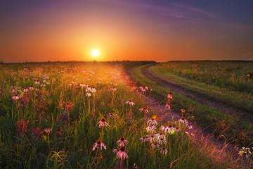 Wah'Kon-Tah Prairie Sunset with Wildflowers Wall mural