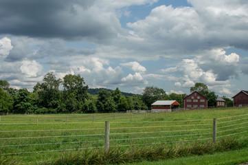 Wall Mural - Meadows and Farm