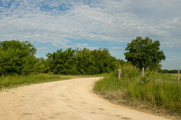 Wall Mural - Dirt Road in the Countryside