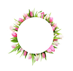 Pink tulip flowers in round frame