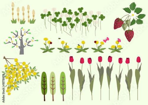 ミモザの花と春の植物春のイメージイラスト素材集fotoliacom の
