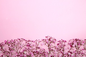 beautiful baby's breath border on the Romantic pink background