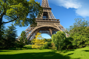 Photo sur Toile Paris Trees in park of Paris