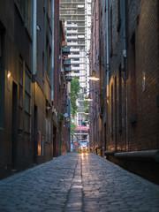 In de dag Smal steegje Melbourne lane ways