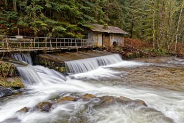 Barrage sur le ruisseau