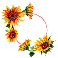 Wildflower sunflower flower wreath in a watercolor style. Full name of the plant: sunflower. Aquarelle wild flower for background, texture, wrapper pattern, frame or border.