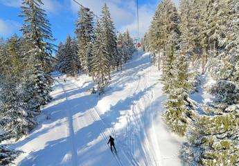 Langlauf Loipe Foto Winter am Ochsenkopf