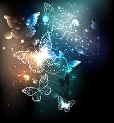 Bright night butterflies