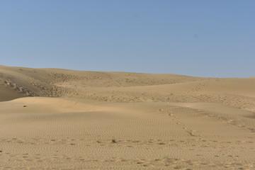 sam sand dunes in thar desert jaisalmer rajasthan india