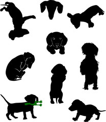 Silhouettes of dachshunds. Vector illustration. Set 6