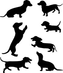 Silhouettes of dachshunds. Vector illustration. Set 5