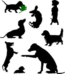 Silhouettes of dachshunds. Vector illustration. Set 4