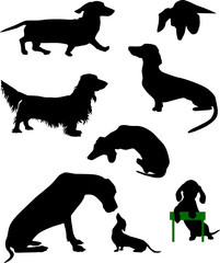 Silhouettes of dachshunds. Vector illustration. Set 3