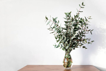 Branches of eucalyptus in a vase on the table