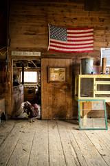 Turkey and American flag in barn