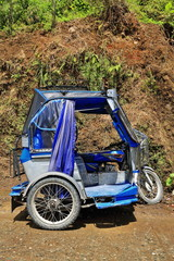 Blue-grey tricycle on Mayoyao-Alfonso Lista-Isabela road. Banaue town-Ifugao province-Luzon-Philippines. 0082