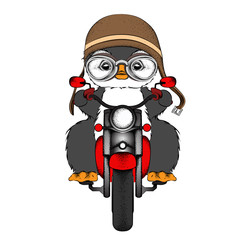 The poster of the penguin wearing the motorcycle helmet and driving the motorcycle. Vector illustration.