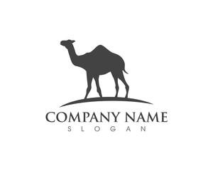 Camel Icon Logo Template design