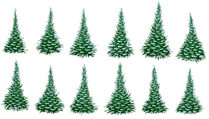 Set of green fir trees in snow isolated on white background