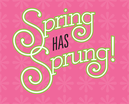 Spring Has Sprung Vector Design on flower background. Fun custom drawn text with fancy swash letters and bold outline on pink background with flower pattern.