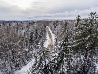 Scenic view of road passing through forest in winter