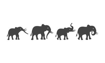 Elephant Logo Template icon