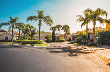 Typical gated community houses with palms, South Florida. Light effect applied Fotomurales