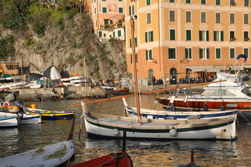 fishing boats in Camogli, Genoa province, Liguria, Italy